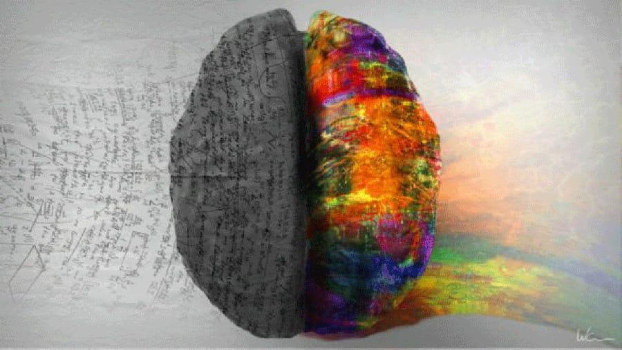 Hemisferis cerebrals