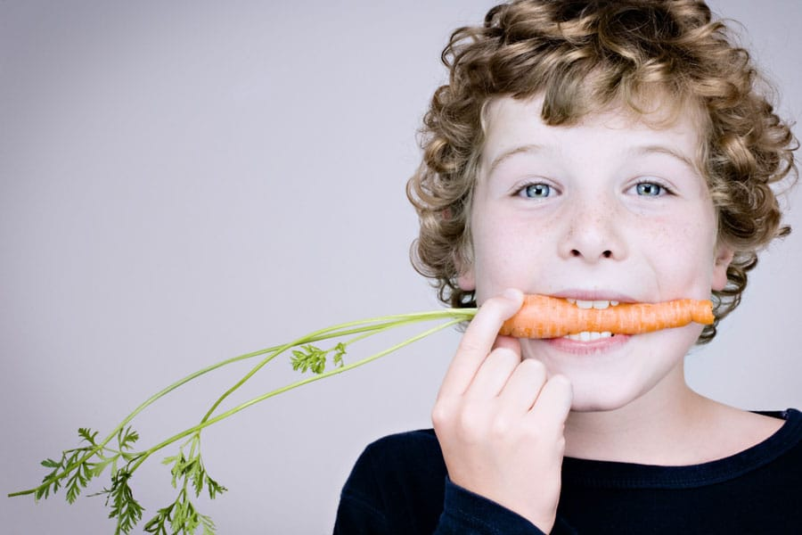 Filosofia nutricional de l'EHVH