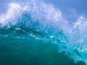 Aigua de mar = memòria cel·lular.
